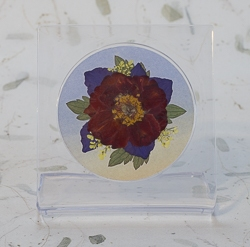 Real Pressed Flowers on Acrylic Easiel Curio Display - ac-03