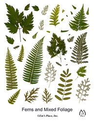 DIY Digital Ferns and Foliage Pressed Leaves