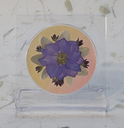 Real Pressed Flowers on Acrylic Easiel Curio Display - ac-04