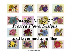 DIY - Digital Sixteen Pressed Flower Arrangements