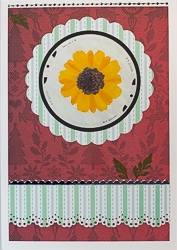 Real Pressed Flower All-Occasion Card with Yellow Coreopsis - 15